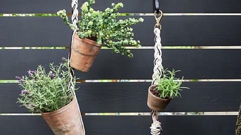 Crea tú propio jardín vertical DIY