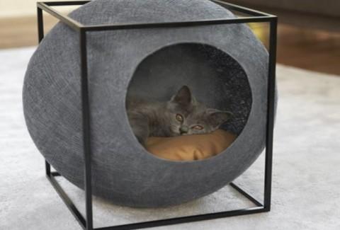 Casas DIY para perros y gatos