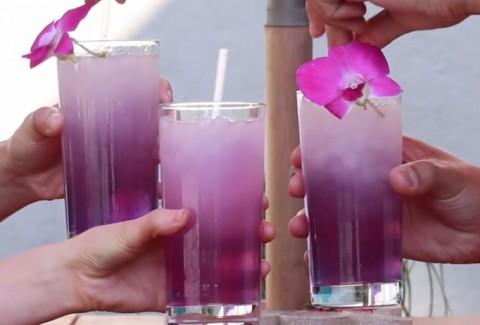 Descubre 4 deliciosos trucos que refrescarán tu verano