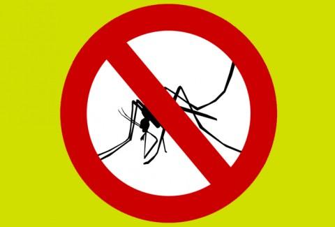 Mantén a raya a los mosquitos este verano con los antimosquitos de ferrOkey
