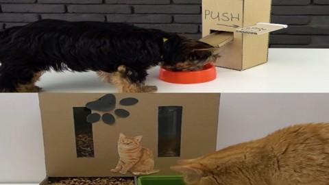 Comedero para mascotas DIY