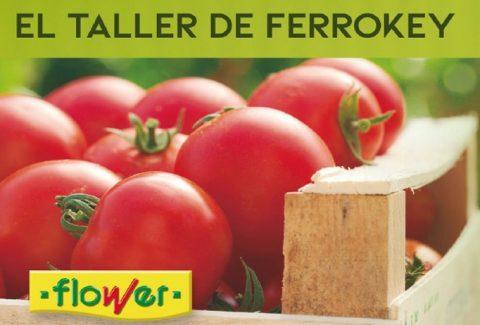 ferrOkey Móstoles (29 mayo): Apúntate a nuestro taller de huerto urbano con Flower